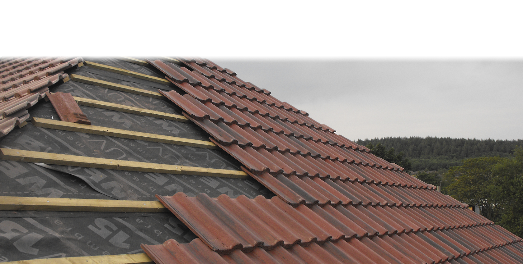 Roofing |The Redsquare Group
